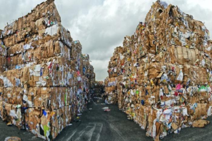 Diễn biến và dự báo thị trường nguyên liệu bột giấy, giấy thu hồi tại Đông Nam Á